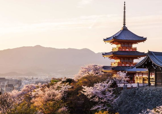 5 JAPANESE EXPERIENCES YOU'LL LOVE IN 2020
